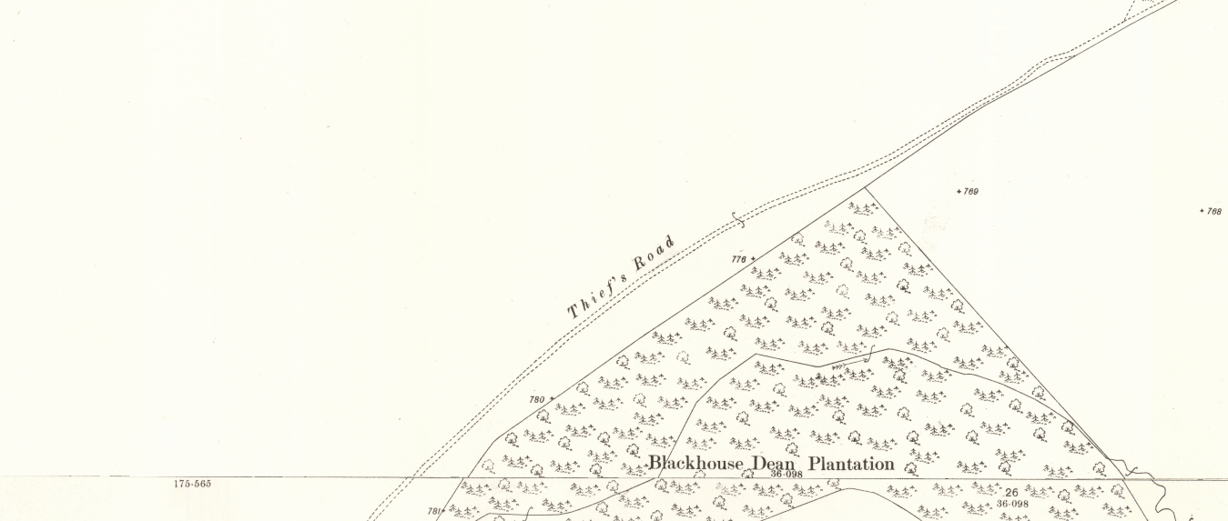 Map excerpt showing a track marked as the Thief's Road, running along the northern edge of a patch of forestry called Blackhouse Dean Plantation