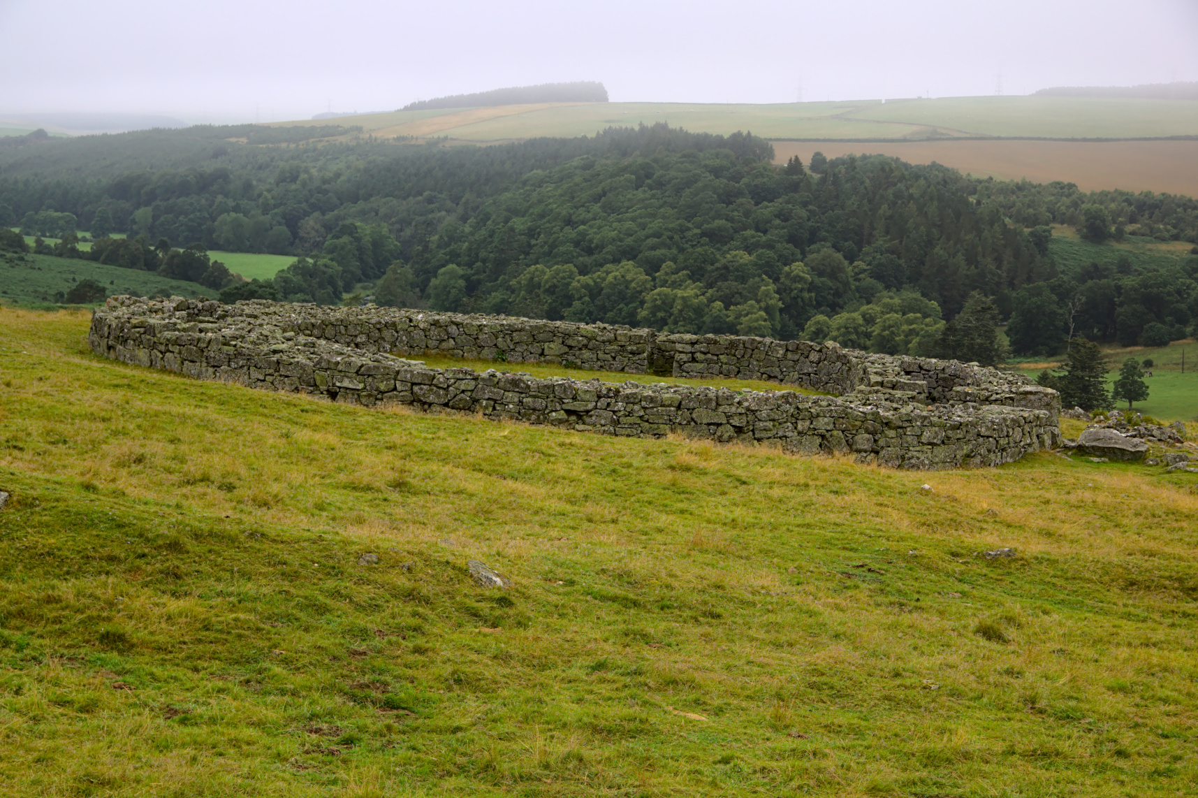 View of Edins Hall broch, from the SE